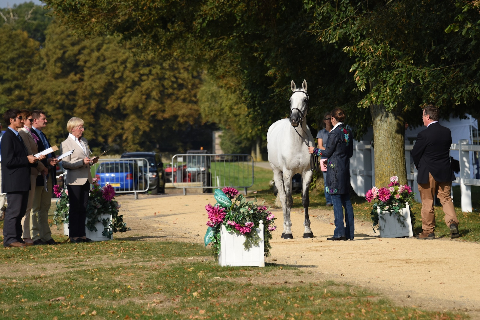 The First Horse Inspection At Blenheim International Horse Trials 2014