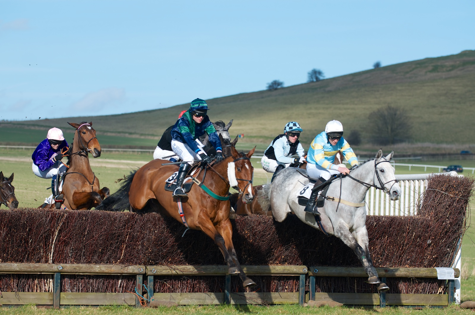 The Vine & Craven Point-to-Point At Barbury Castle