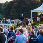 Big Crowds Gather For The Elite Event Horse Auction
