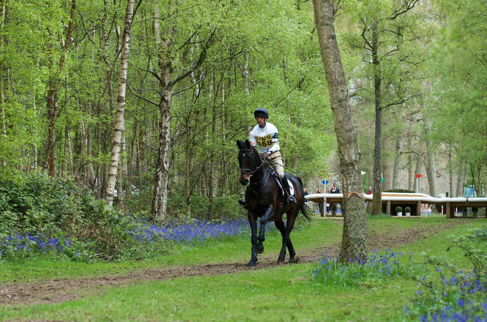 A Carpet Of Bluebells At Hambleden Horse Trials