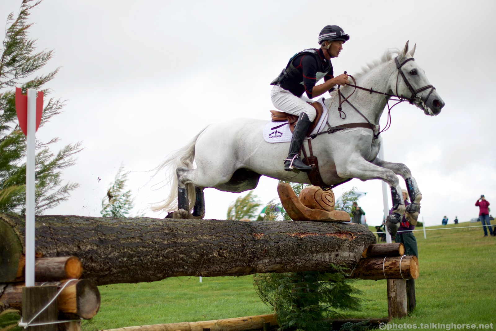 Andrew Nicholson & Avebury CIC*** Winners