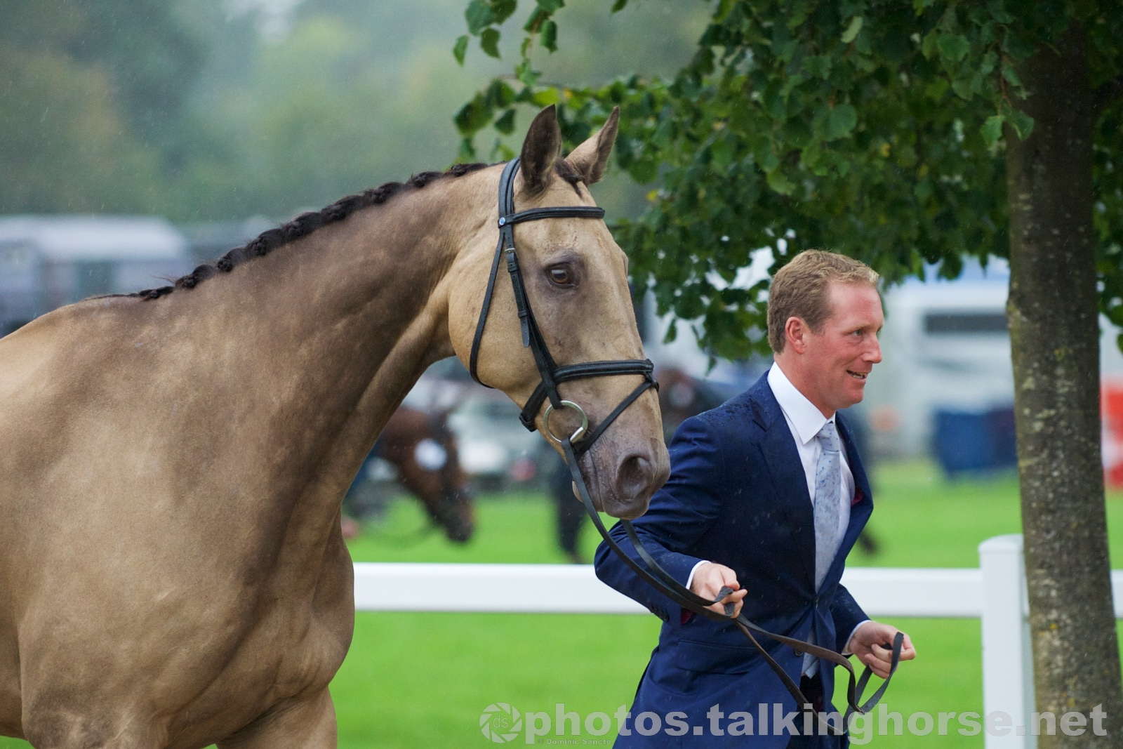 Oliver Townend | Blenheim Horse Trials 2015 Trot-Up
