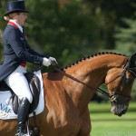 | Blenheim Horse Trials 2015 Dressage