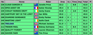 Blenheim Horse Trials CIC*** 2015 Top 10