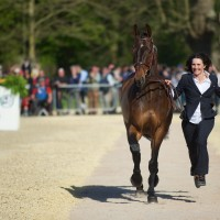 Badminton 2016 trot-up | Alice Naber-Lozeman & Harry Belafonte