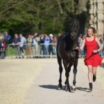 Badminton 2016 Trot-up | Emily King