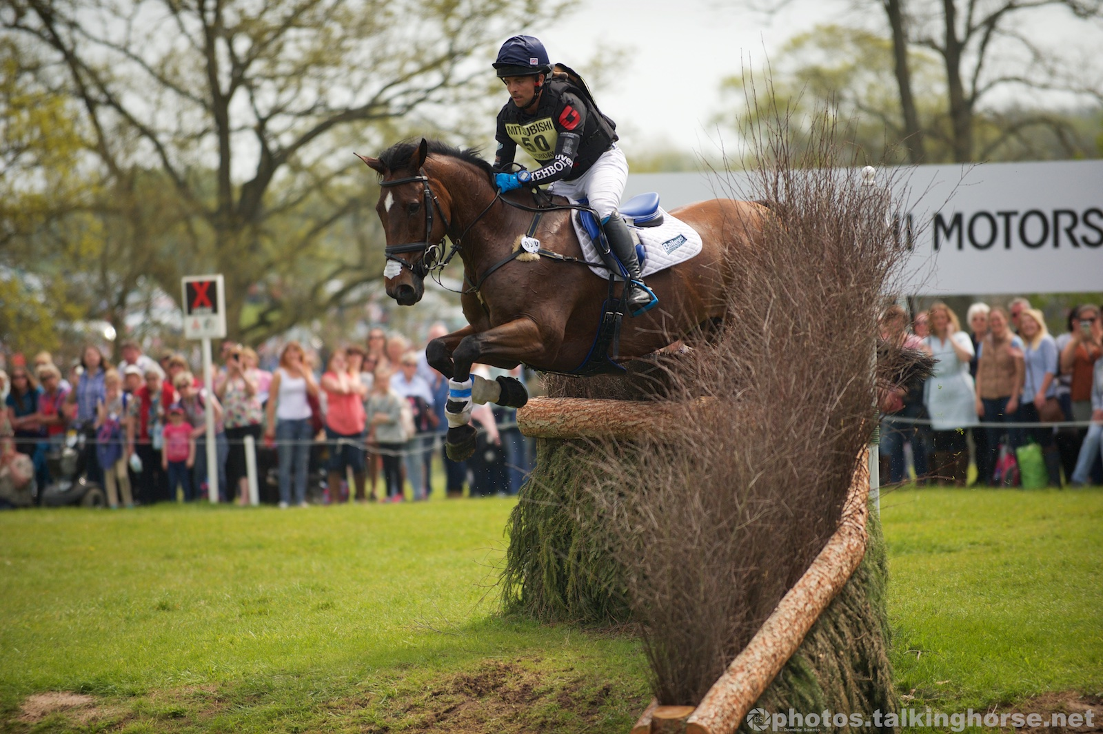 Ben Hobday & Mulrys Error   | Badminton Horse Trials 2016 Cross Country