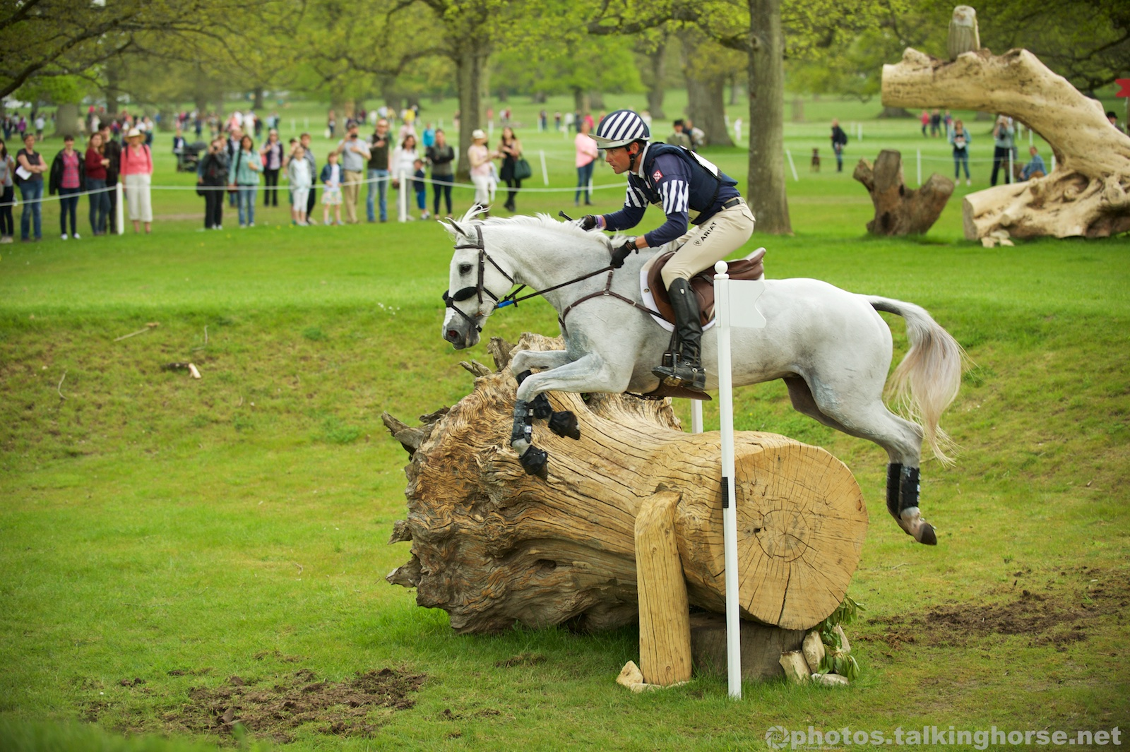 Boyd Martin & Cracker Jack   | Badminton Horse Trials 2016 Cross Country
