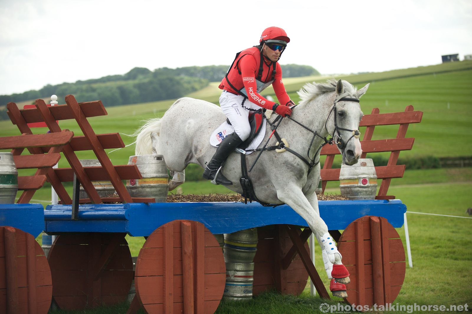 Paul Tapner & Kilronan - 4th In The Main CIC*** Class